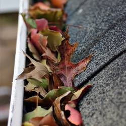 Clogged gutters filled with fall leaves  in Harrodsburg